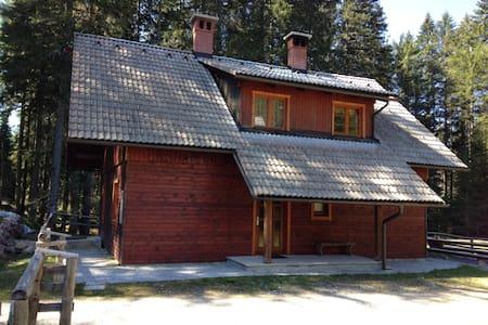 Forest cottage Pokljuka - House11 - House
