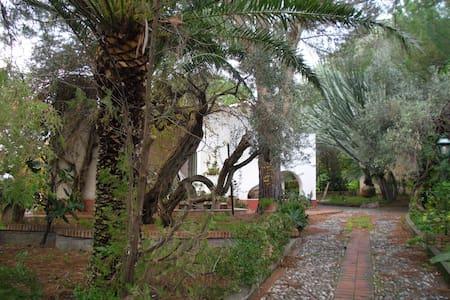 Affittasi villa a Cefalù - Vila