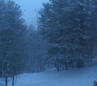 Lincoln Forrest Mountain Retreat - Cloudcroft - Blockhütte