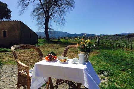 Oasis Winery Home @Tenute Pacelli - Huoneisto
