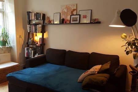 Cozy&cheap. Good location.