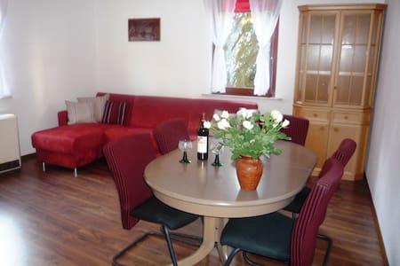 Comfortable apartment in Schwarzwald - Nikol - Apartament