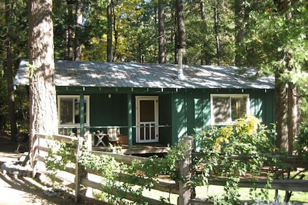 Pasture View Cabin - Trinity Center