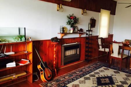 Comfortable home with nice food - Haus