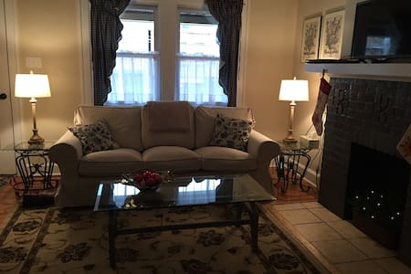 Turn of the century townhouse - Pittsburgh - Appartement