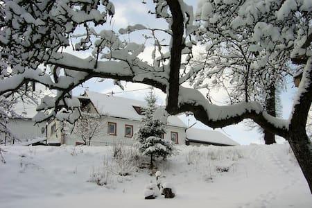Apartment in nature of the Eifel! - Kopp