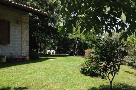 Chalet/ Casa vacanza - San Marco D'alunzio - Cabin
