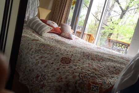 Amazing Futon + hot brkf, Red Line. - Silver Spring - Bed & Breakfast