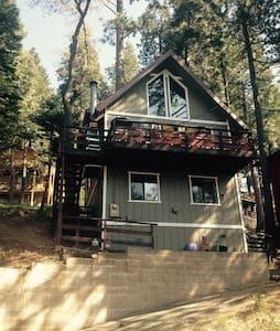 Wildlife Treehouse - Snow Ski - Hiking - Lakes - Hus