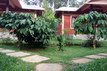 Clean and green room in a natural setting - Wayanad - Apartament