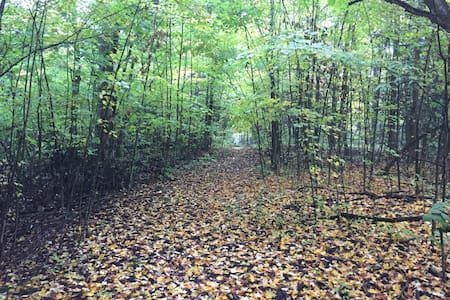 Forest Therapy by Lake Ontario - Bath - Tente