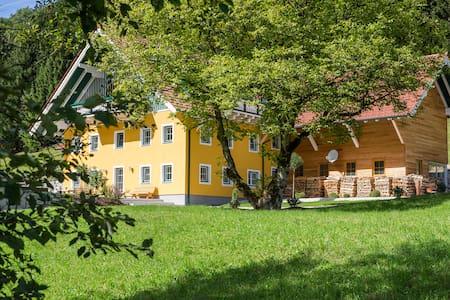 Stilvolle Ferienwohnung in Koppl - Salzburg/Koppl - Apartment