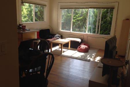Spacious Room in downtown Berkeley - Berkeley - Wohnung
