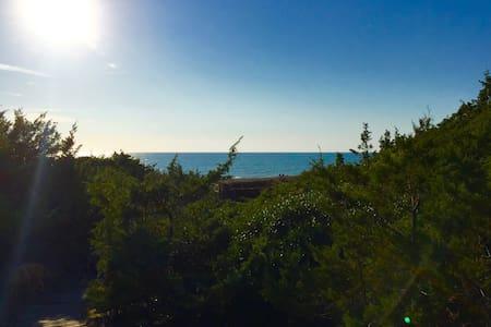 Beachfront - Alta maremma - Marina - Haus