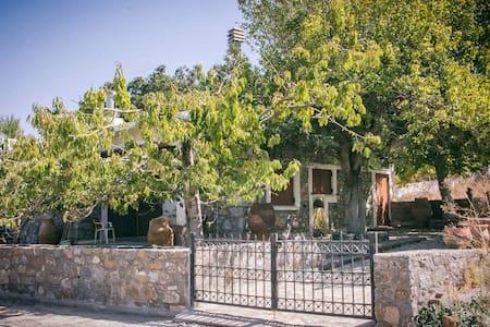 Chronakis Home / Psichro, Lasithi - House