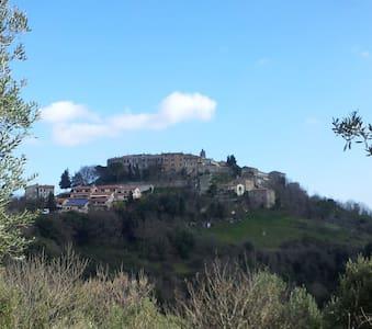 "La ""Mucca"" Toscana al Podere Agrituristico Regina - Montorsaio - Bed & Breakfast"