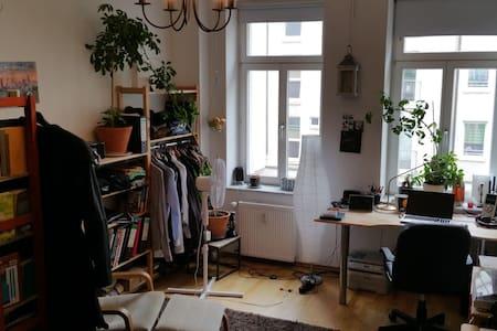 Schönes helles Zimmer in zentraler Lage - Apartment