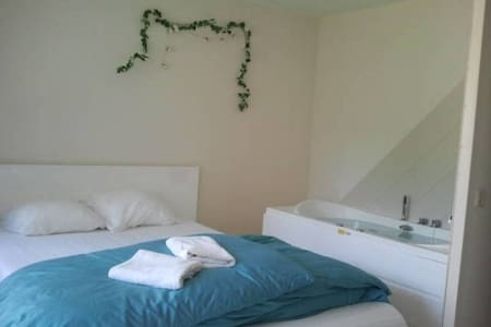 Big room with jacuzzi and private toilet - Teljes emelet