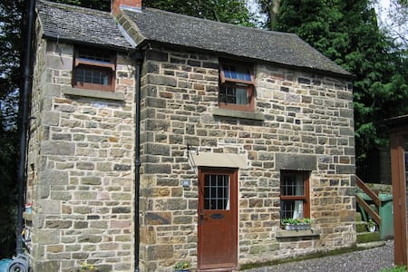 Halcyon Cottage, self-catering hols - Dom