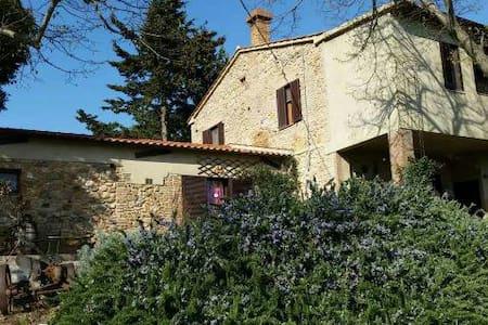 Appartamento nella Maremma Toscana al PodereRegina - Montorsaio - Apartment