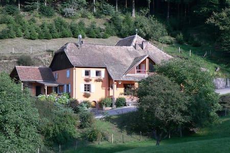 Chez Florent - Fouchy - Apartment