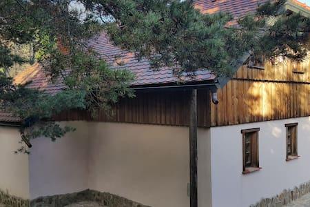 Modern ECO cabin in untouched nature - Stranski Vrh - Blockhütte