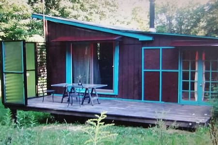 Secluded rustic cabin retreat - Sidney Center - Cabin