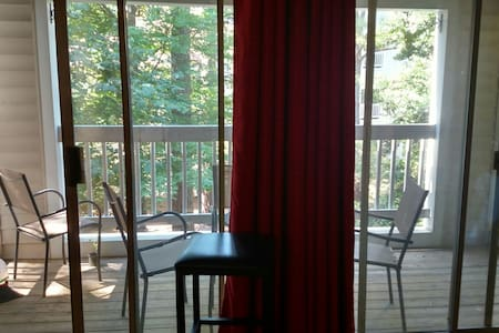 Quiet Bed/Bath near RDU, NCSU and downtown Raleigh - Raleigh - Apartment