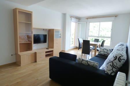 Amplio y soleado apartamento en Jaca - Jaca - Apartment