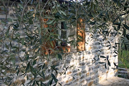 Holidays under the olive trees  - Casa Progallo - House