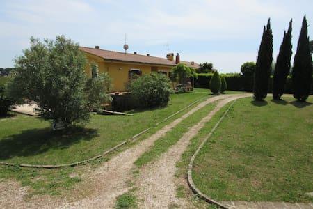 Miniapp. Roma Nord nel verde 30' dal centro - Roma - Flat