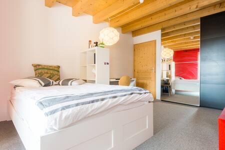 Modern room in charming farm - Cernex - House