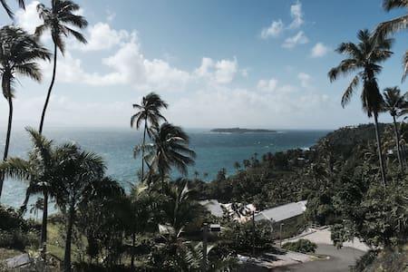 Beautiful Beach front Apartment - Samaná - Appartamento