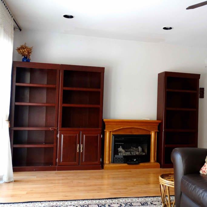 gas fire place, 3 book shelf