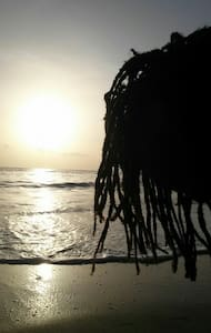 The Beach House-2 - Port Antonio
