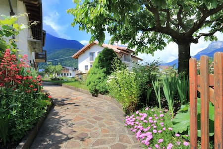 Super B&B nelle Dolomiti - Bed & Breakfast