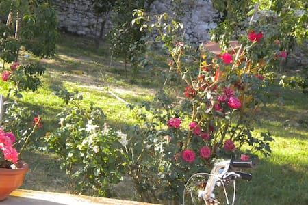 Olintheus - Mystras - Villa