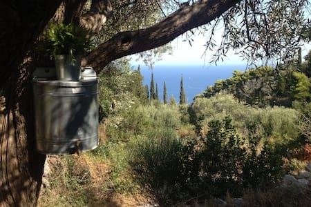 Wooden Studio with View Agios Nikitas - Hytte