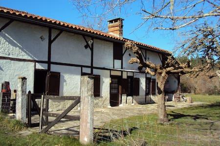 Maison landaise sur 2ha de forêt - Sore