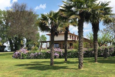 Agriturismo - Appartamento - Isola della Scala - Bed & Breakfast