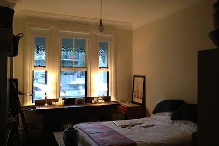 Cute studio apartment Surry Hills