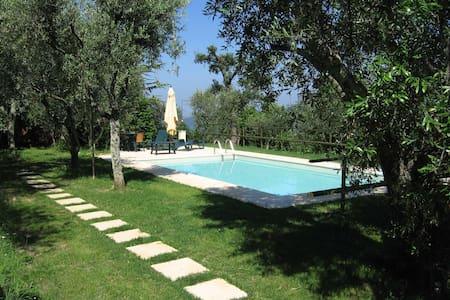 Albatrello, house with Swimmingpool - House