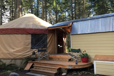 Yurt in the forest. - Jurta