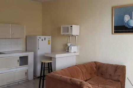 Studio with kitchenet - Apartment