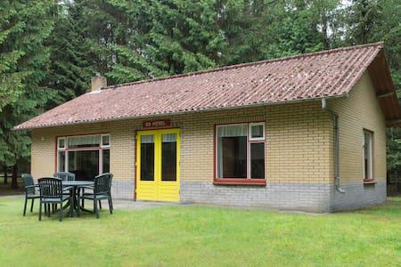 6-persoons bungalows (B1) in een bosrijke omgeving - Bungalow
