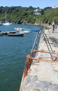 Breath taking coastal cottage £25 - Solva