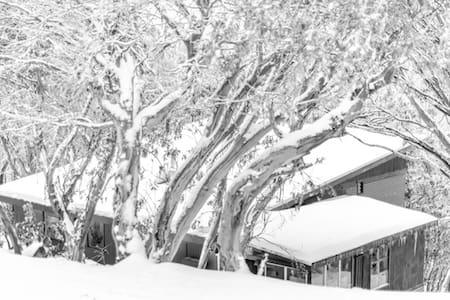 Sundowner Lodge Room5 - On Mountain - Mount Buller - Chalet