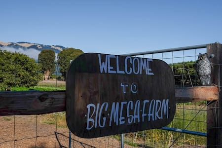 Big Mesa Farmstead: The Water Tower - 一軒家