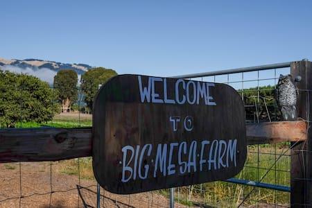 Big Mesa Farmstead: The Water Tower - 獨棟