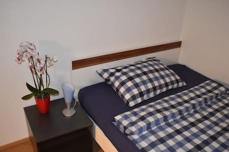 Room in a renovated house near the railway station - Chur - Apartemen